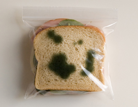 Anti-Theft Sandwich Bags