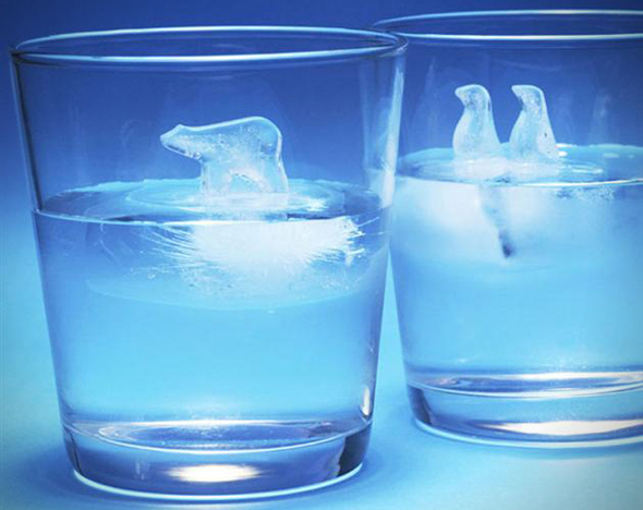 Global-Warming-Polar-Ice-Cube-Molds-1