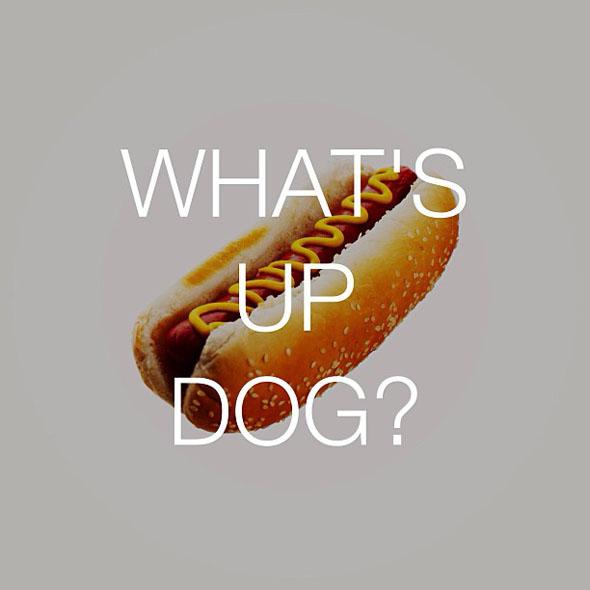 talking-food.-dog