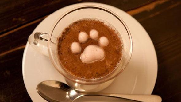 marshmallow-latte-art-kitty-4