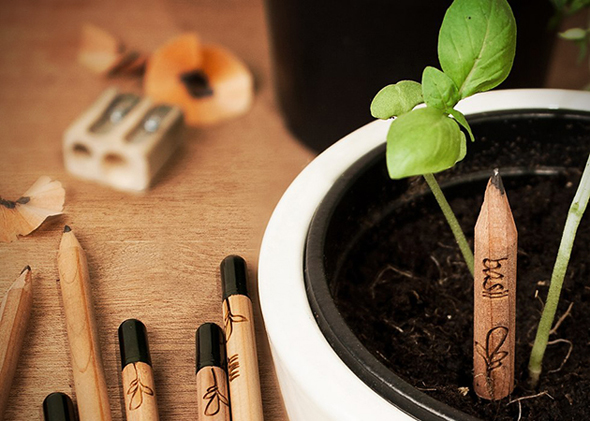 Sprout-Pencils-Plant-Your-Pencil-0