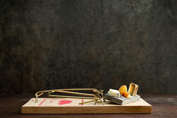 gourmet-mouse-traps
