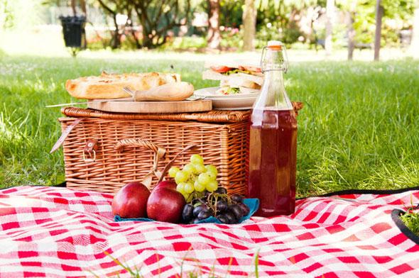 bear-skin-picnic-blanket-5