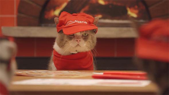 cat-pizza-hut-hed-2014