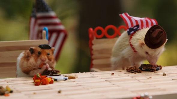 tiny-hamsters-bbq