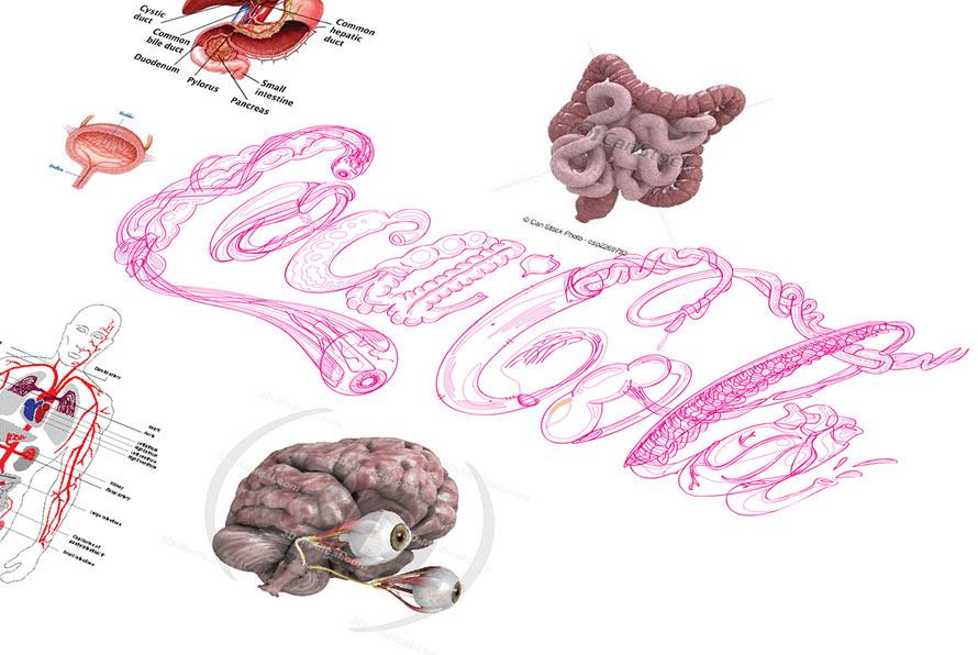 coke-logo-organs-4