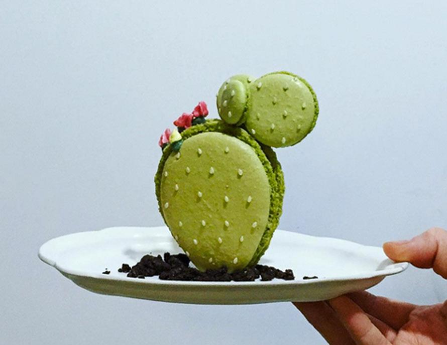 macaron-cactus