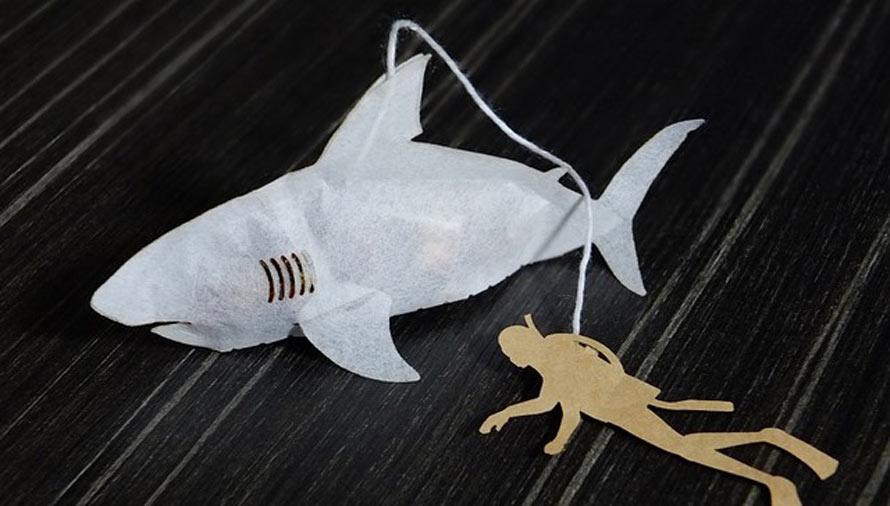 shark-tea-2